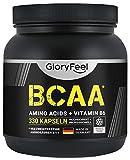 BCAA 330 Kapseln - Essentielle Aminosäuren Leucin, Valin und Isoleucin Plus Vitamin B6 - Laborgeprüft und ohne Zusätze hergestellt in Deutschland
