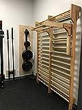 Artimex Adapter Klimmzugbügel und Dipstation für Sprossenwand, für Gymnastik und Fitness, Artikelnr. 248-holz