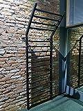 ARTIMEX Sprossenwand aus Metall (schwedische Leiter) für Gymnastik und Fitness - Wird in Heimen, Turnhallen, Fitnesscentern oder Outdoor verwendet, 255 x 100 cm, Artikelnr. 221-Gladiator